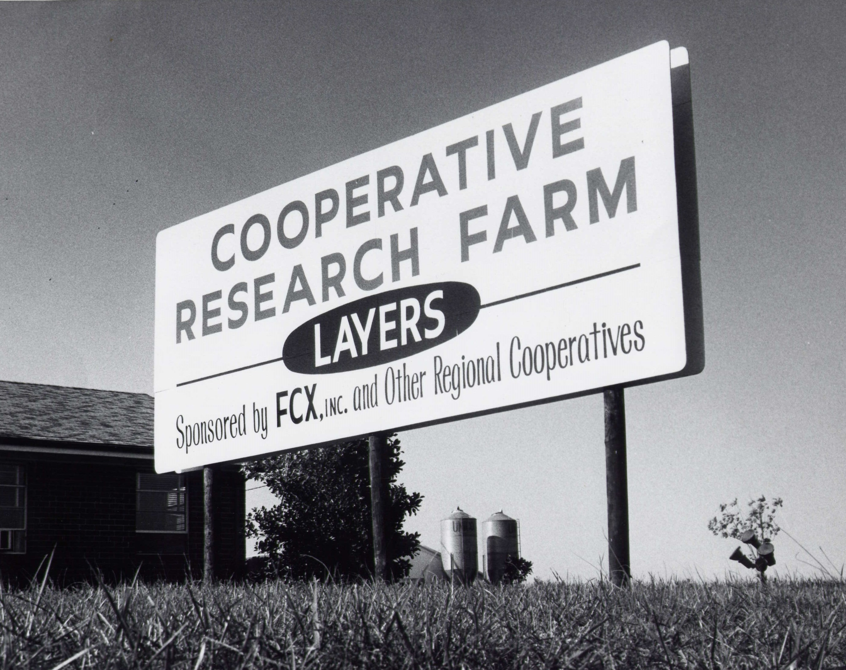 CRF Layer Resaerch in Garner, North Carolina - 1960's and 70's