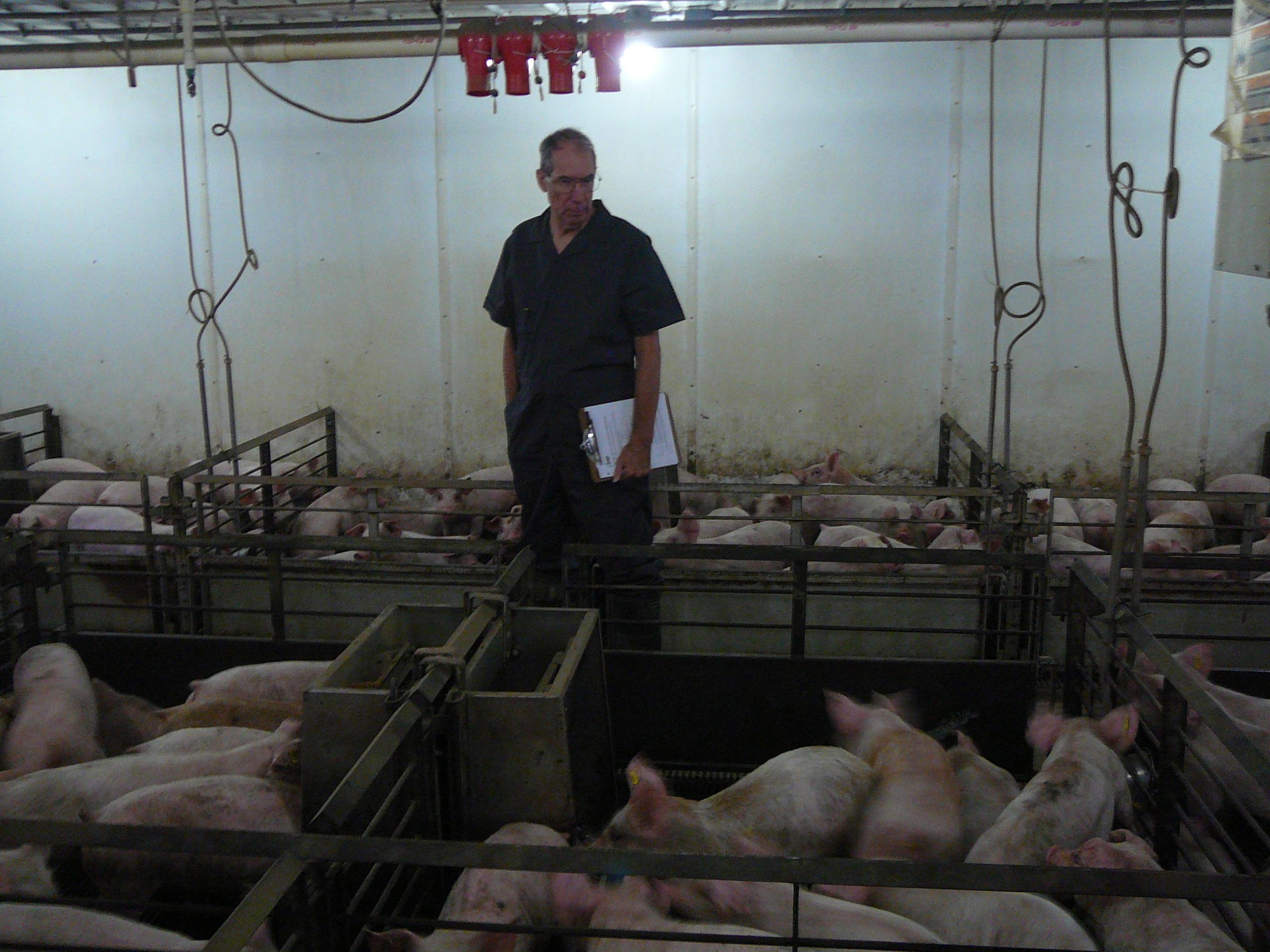 CRF Nursery Research Farm