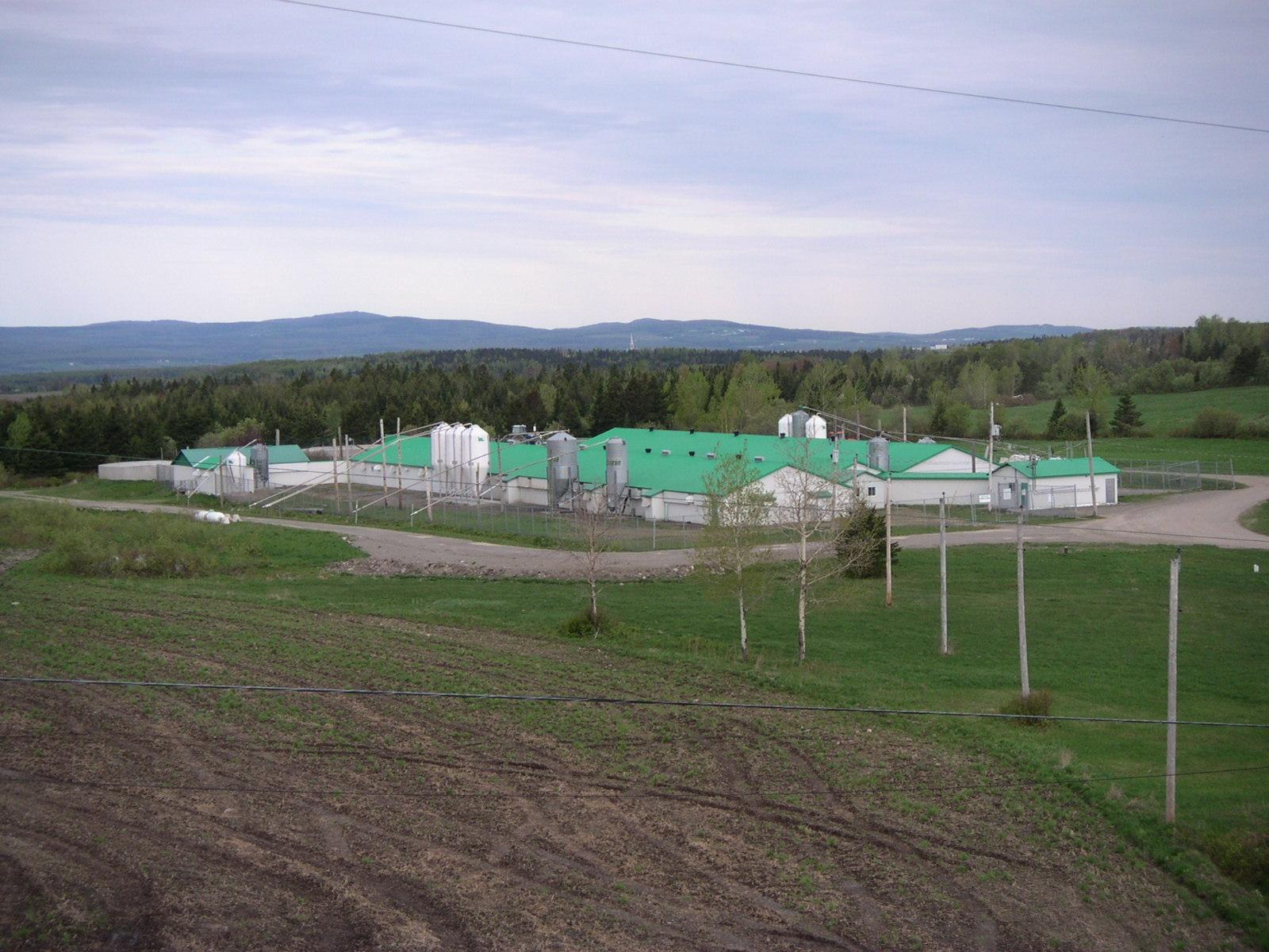 CRF Sow Research Farm - Frampton, Quebec